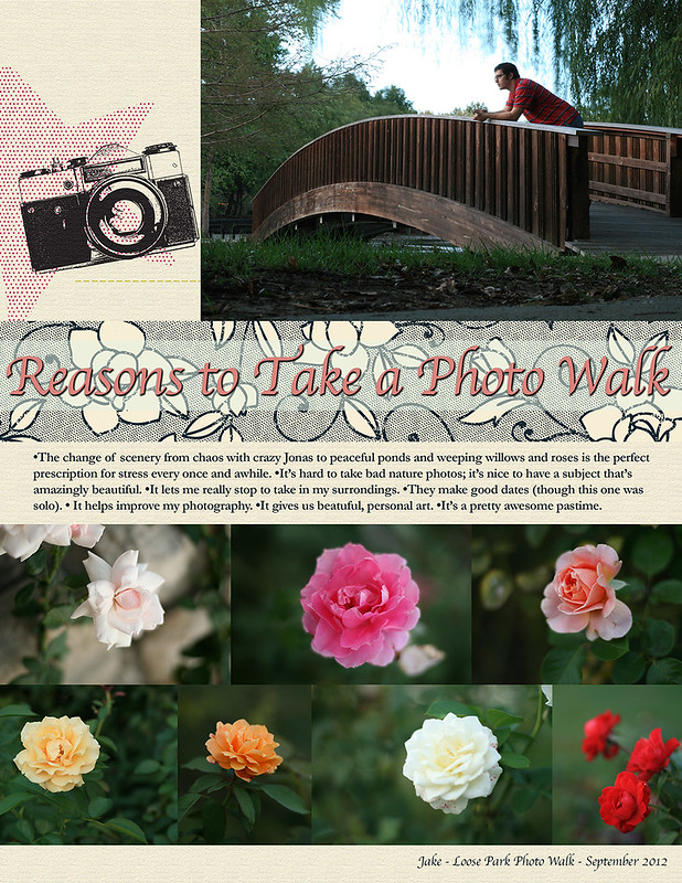 Reasons to Take a Photo Walk