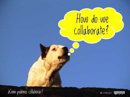 How do we collaborate? = ¿Como podemos collaborar? #Roofdog
