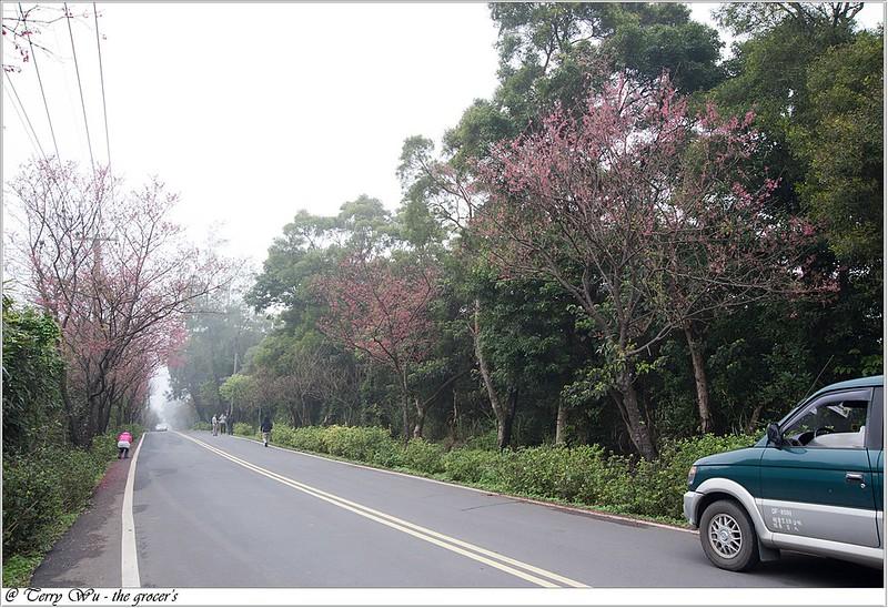 2013-02-14 三芝走春-15