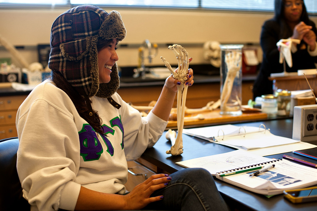 SF State student Orianna Trau jokes with another student while studying the bone structure in anatomy on Tuesday, Feb. 12, 2013. Photo by Dariel Medina / Special to Xpress