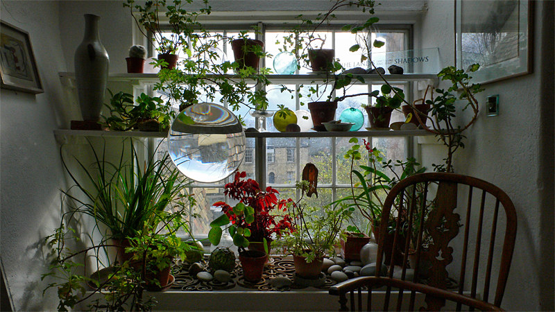Horticultural Window