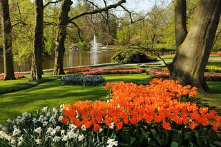 Las flores son la gran industria de Holanda.