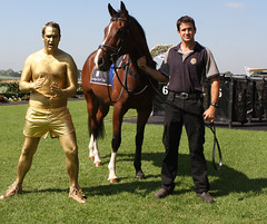 Fitzy and Wippa Golden Race