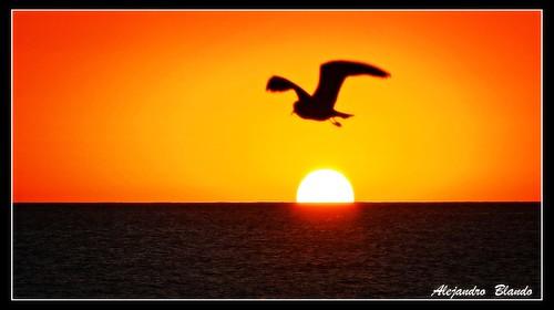 "sea beach landscape uruguay atardecer mar nikon sundown paisaje puntadeleste solanas d7000 nikonflickraward"""