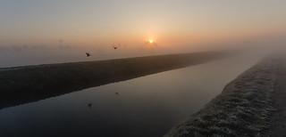 Morning fog - 2