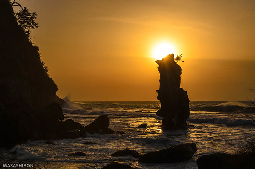 sunset sea tree japan pine ngc 日本 夕日 matsushima 島根県 d7000 大田市 02景色 掛戸松島