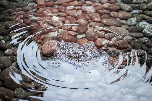 Photo:Zen By:squesada70