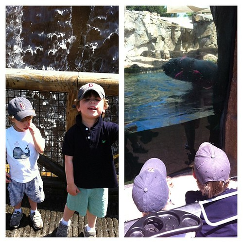 Fun morning at the zoo. #yesmillerispickinghisnose