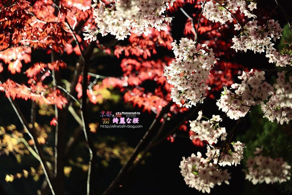 026_2013-04-05-18h41m36IMG_2914