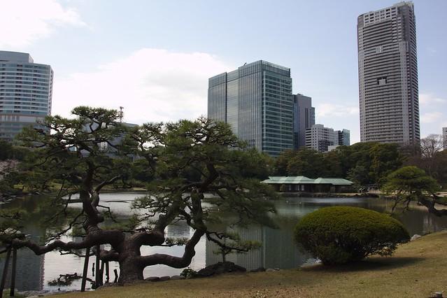 0279 - Hamarikyu Gardens