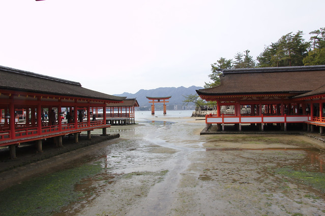 0917 - Isla de Miyajima