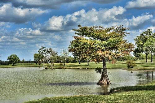 sky tree nature clouds landscape pond nikon texas blueskys georgebushpark nikond700 topazadjust susankopchinsky
