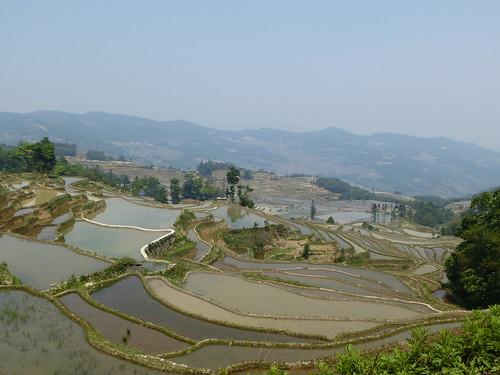 Yunnan13-Yuanyang 13-Quanfuzhoang (1)