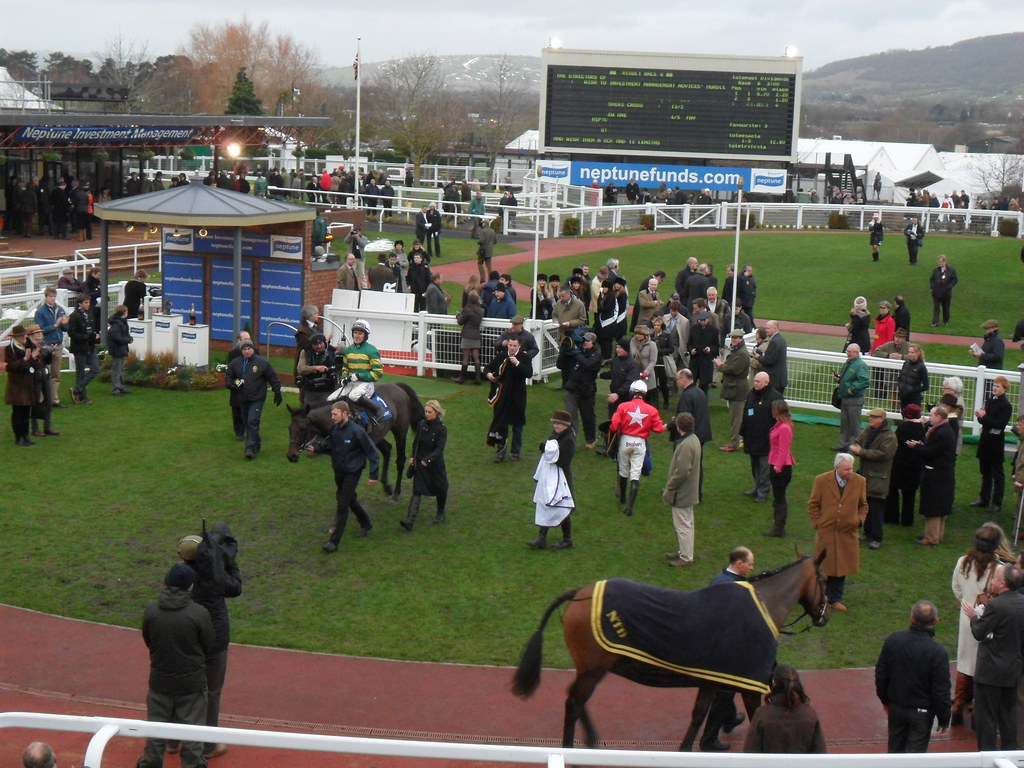 At Fishers Cross AP McCoy 260113