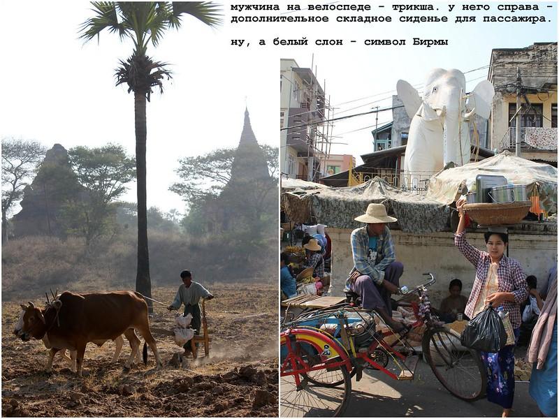 12pic Burma