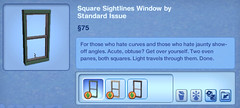 Square Sightlines Window by Standard Issue