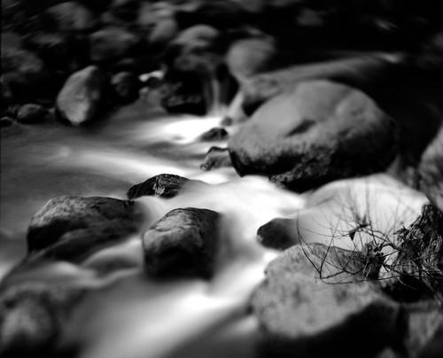 blackandwhite bw film nature night analog river landscape neopan graflex acros acros100 centurygraphic