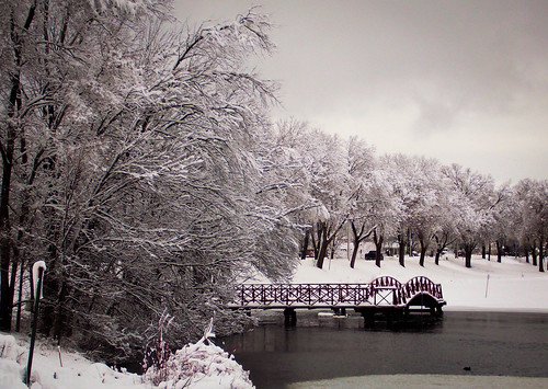 park winter lake snow nature minnesota landscape scenery winona snowcovered