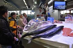 cod(0.0), tuna(1.0), fish(1.0), market(1.0), fish(1.0),