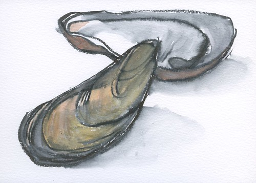 mussels by Bricoleur's Daughter
