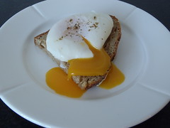 Pocheret flydende æg med toast