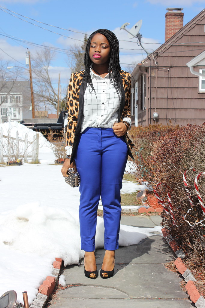 Leopard and Blue