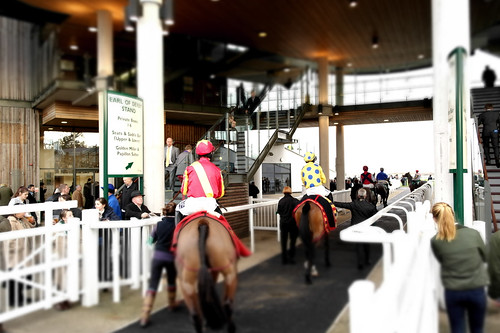 Horse At Aintree