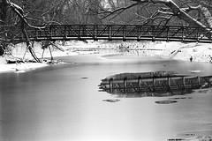 Bridge over the Poudre River