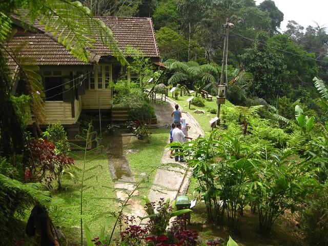 Taiping Maxwell Hill IMG_5896
