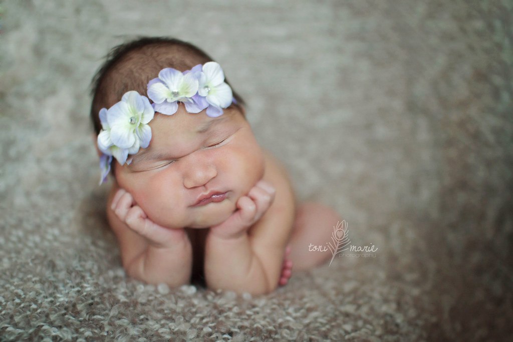 hutto newborn photographer - Toni Marie Photography