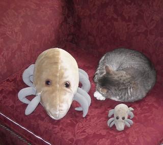 Dust Mite & Cat (2)