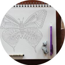 flutterby225