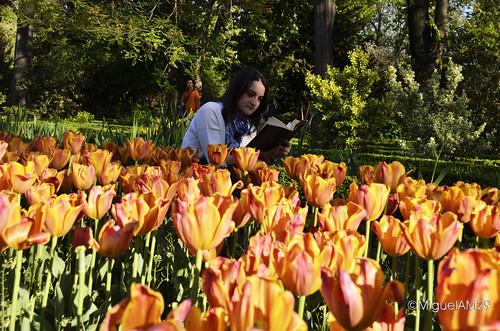 Leyendo en el Botánico