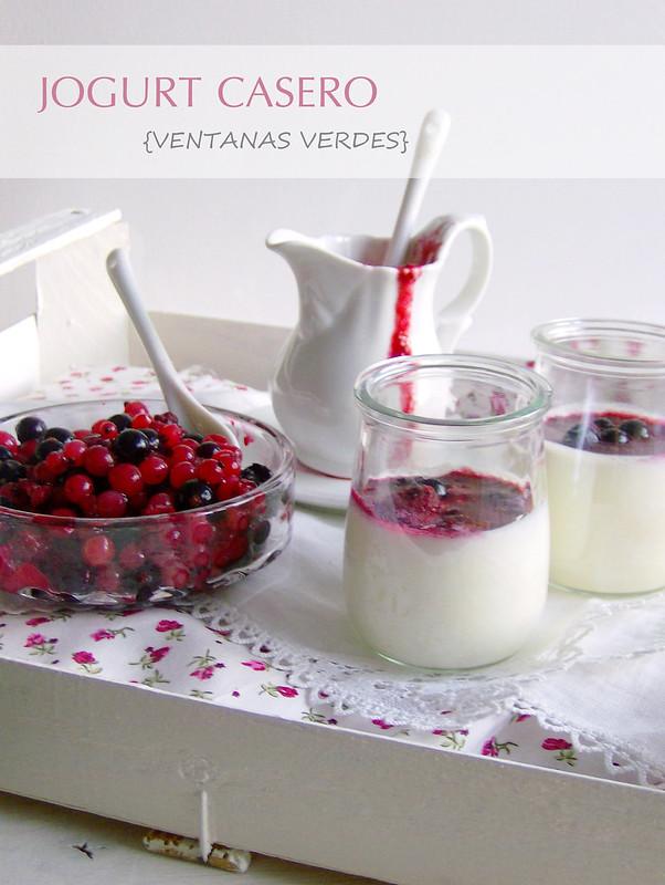Jogurt casero