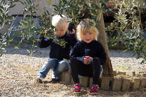 San Gimignano: Agriturismo Montegonfoli