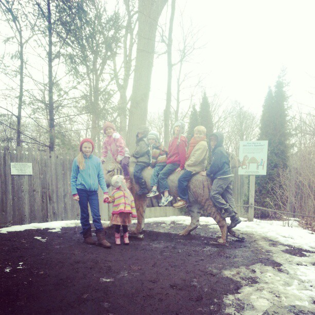 Zoo with friends. :)
