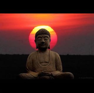 Buddha Sun
