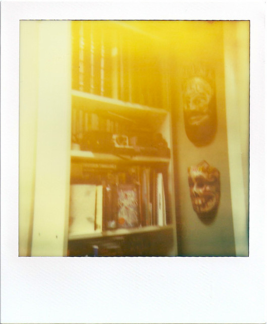 Bookcase with Light Leak