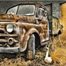 The truck and the duck by Jack Mallon