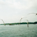 kerala_backwater_chinese_fishing_nets