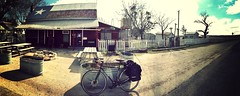CoMotion Americano at historic Specht's Country Store near Bulverde, TX