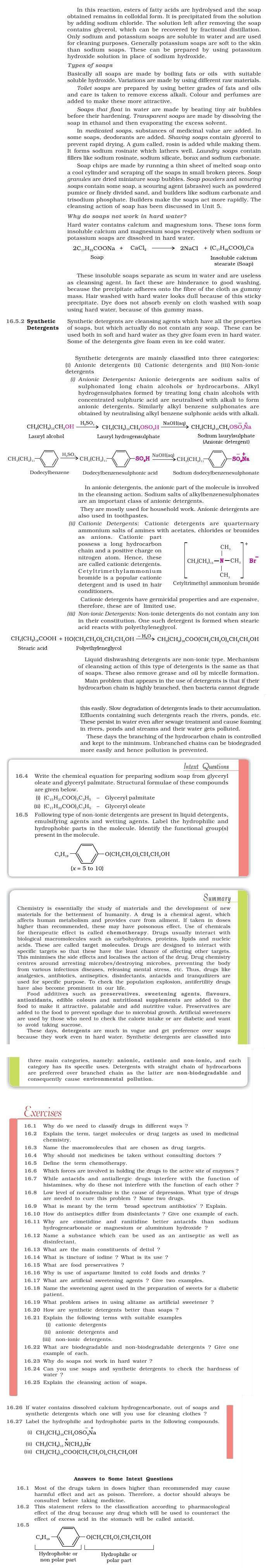 NCERT Class XII Chemistry Chapter 16 - Chemistry in Everyday Life