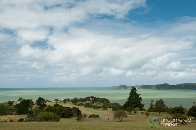 Golf course and green waters paihia new zealand for Landscaping courses nz