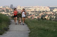 Závod je jako běžný život, tvrdí sportovní psycholožka