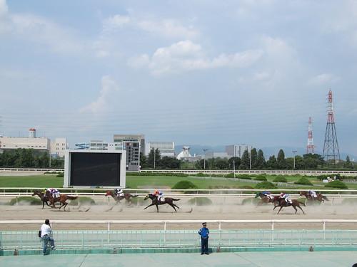 Sonoda Racecourse 園田競馬