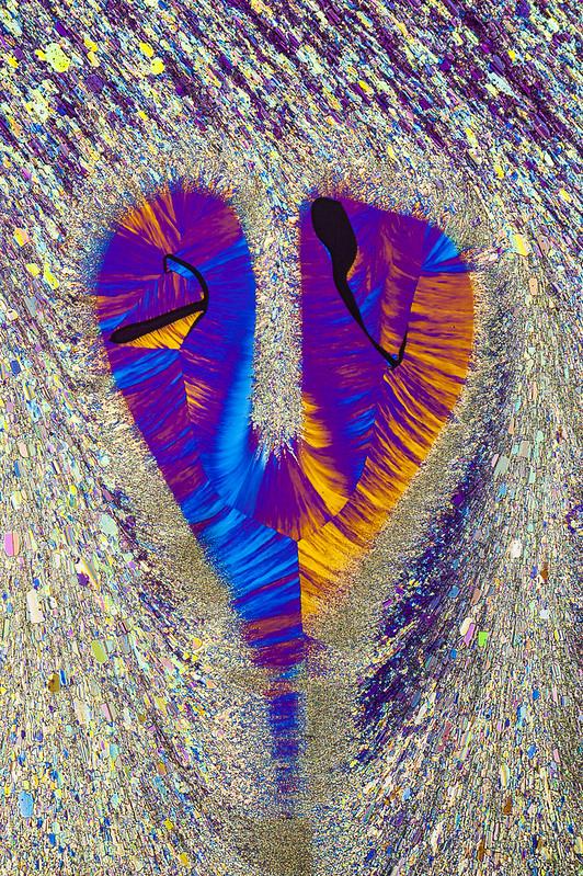 sulfur_heart