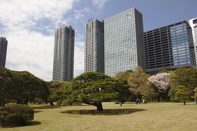 0266 - Hamarikyu Gardens