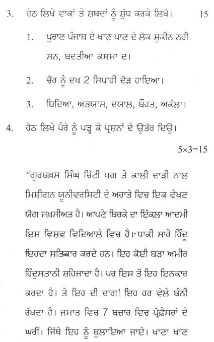 DU SOL B.A. Programme Question Paper -  Punjabi Discipline -  PaperVII/VIII