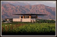 Templos del Vino: Parte 1