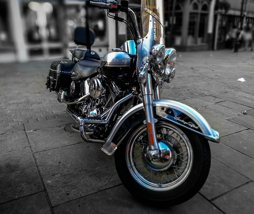 Harley Davidson Color Pop